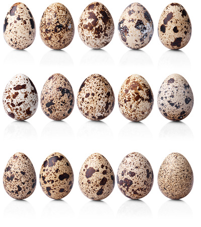 collection of quail eggs isolated on white background Banco de Imagens