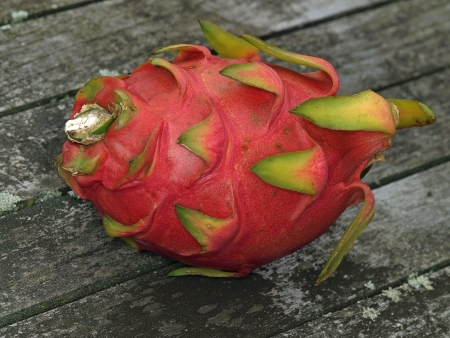 Pitahaya, or also called dragonfruit