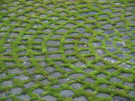 Ornament out of cobbles and moss Stock Photo