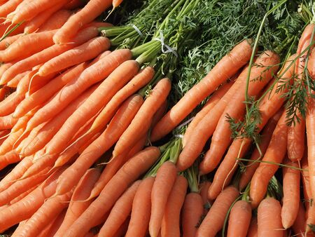 A pack of fresh harvested red carrots