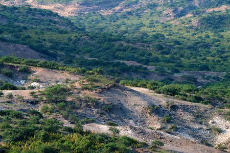 habilis: Olduvai Gorge is a cradle of mankind, Tanzania, Africa