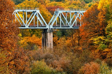 forest railroad: Railroad bridge in autumn landscape of mountain forest