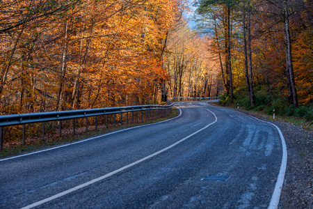 Winding road curves through autumn forest in Russia Stock Photo