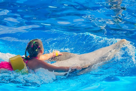 Common dolphin playing with child in pool with blue water