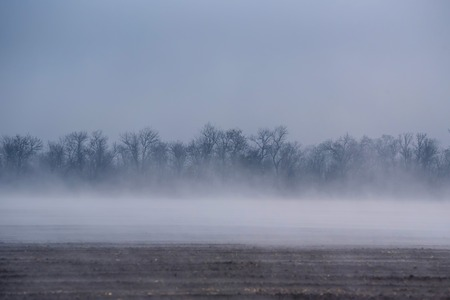 recently: Scenic morning fog over recently plowed farmlands