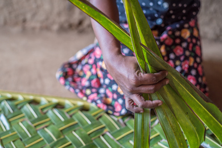 basketry: Woman hands braiding green coconut leaves Stock Photo
