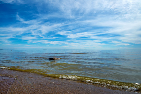 Beautiful Baltic coastline and seascape Stock Photo