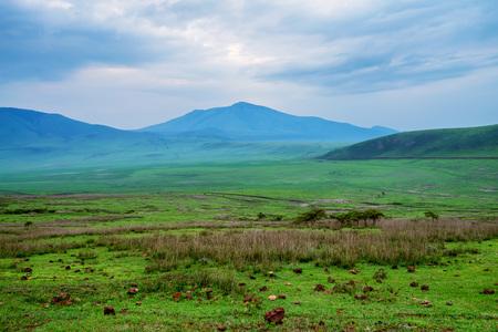 Landscape in Tanzania, depression near Ngorongoro