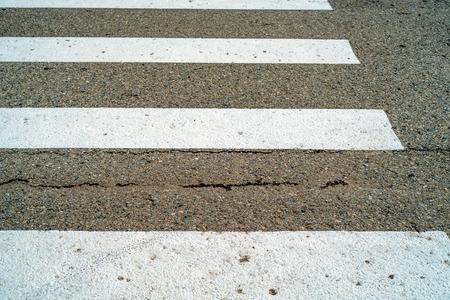 one lane sign: Zebra pedestrian crossing