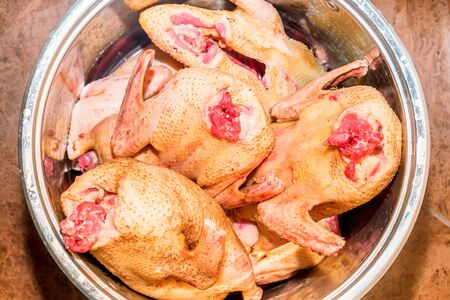 Several carcasses of raw chicken