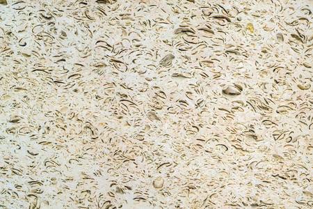 Shell sandstone texture Stock Photo