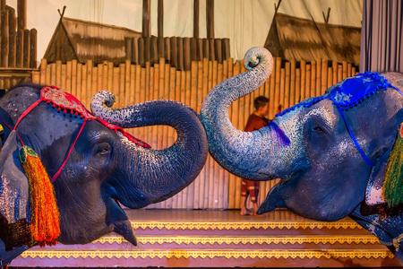 Spectacular elephant show Foto de archivo