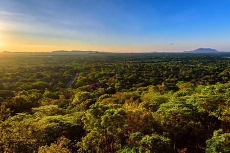 Aerial view of tropical forest of Sri Lanka