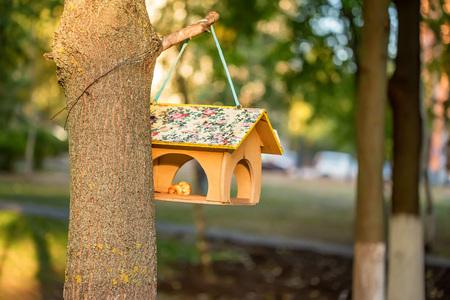 Birds house feeder Stock Photo