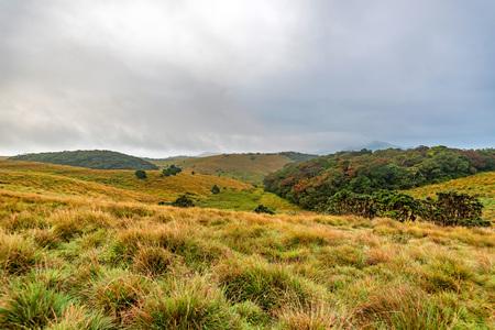Scenic view in Horton Plains, Sri Lanka Stock Photo