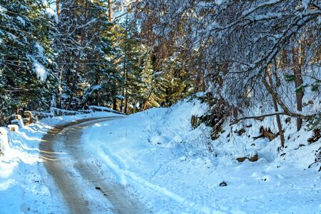 Road through winter mountain forest