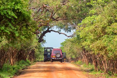 YALA, SRI LANKA - DECEMBER, 2016: Safari vehicles, Yala National Park, Sri Lanka Editorial