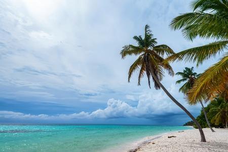 Ocean and tropical coastline in Dominican Republic