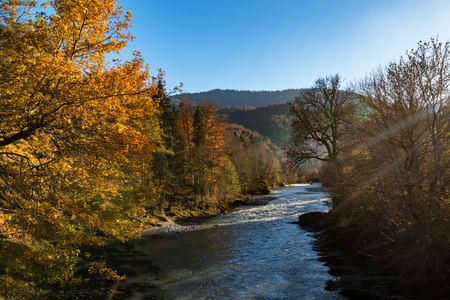 Fall landscape with mountain river and forest