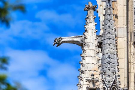 Beautiful Gargoyles of Notre-Dame de Paris facade Stock Photo