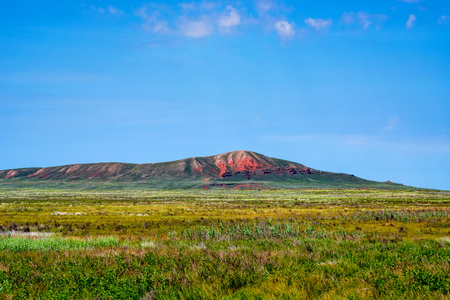 Amazing distant landscape of mountain Big Bogdo and blooming steppe