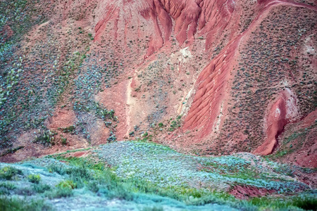 Close view of red soil and green grass of mountain Big Bogdo. Russia