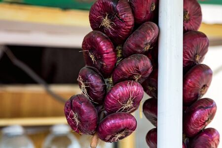 View of organic red onion hanging in bunches on local market Stok Fotoğraf