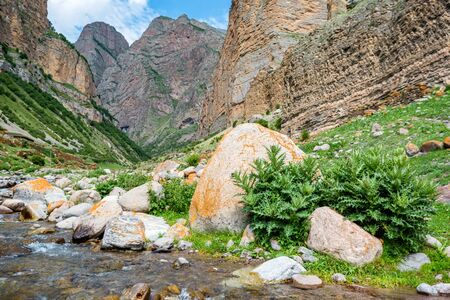 Nature in the mountains of Caucasus. Beautiful river stream, green bush and stones