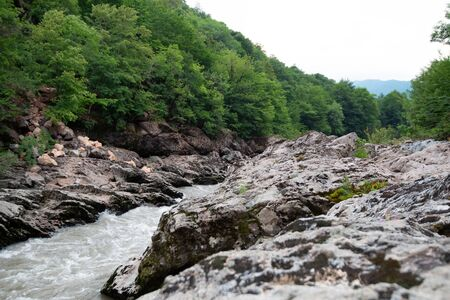 Summer landscape with mountain river, rocks and green forest