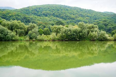 Peaceful landscape with green trees on river bank in steppe Stock Photo