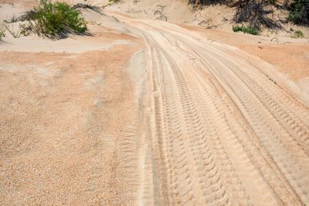 Semi-desert landscape with tire traces on sand
