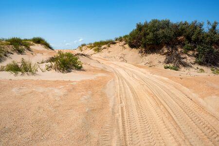 Semi-desert landscape with tire traces on sand Stockfoto - 129111718
