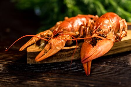 Boiled crayfish on rustic wooden background close