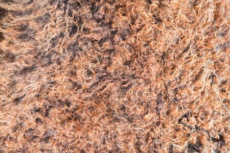 Close up of natural brown fur texture background Фото со стока - 131065437