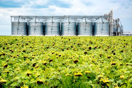 Distant view of sunflower oil refinery in a field Фото со стока
