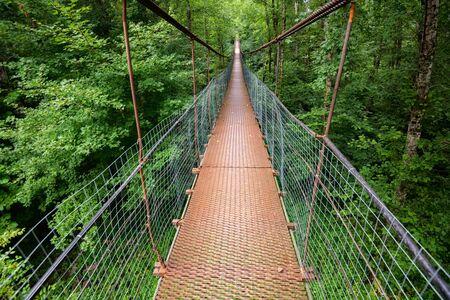 Narrow metal foot bridge across green forest in summer Фото со стока - 131066761