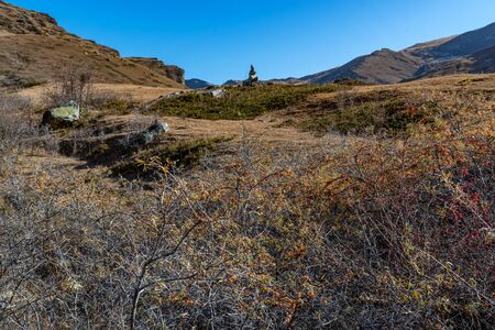Late fall landscape of mountains in Kabardino-Balkaria, Russia with dry grass, boulders and sea buckthorn tree Фото со стока