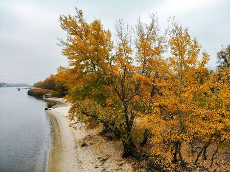Sandy river bank and yellow trees in fall. Rustic countryside landscape in Russia Фото со стока - 136269451
