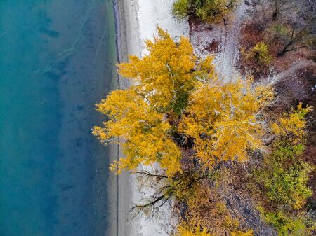 Sandy river bank and yellow trees in fall. Rustic countryside landscape in Russia taken by drone Фото со стока - 136269401