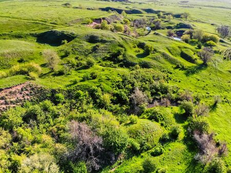 Beautiful summer countryside with bright green vegetation in Don steppe