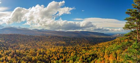 Scenic panorama of autumn forest in mountains