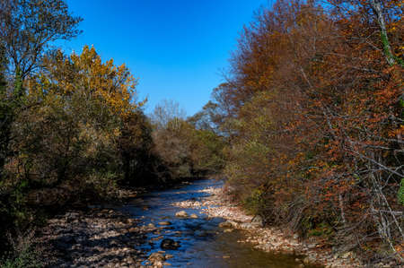 Autumn landscape with mountain dry brook and forest