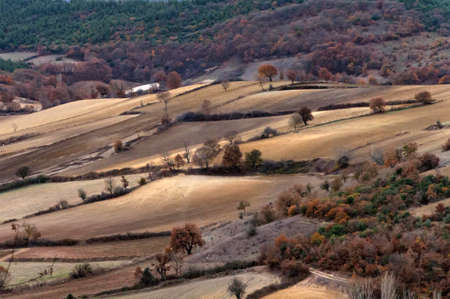 Aerial drone view of agricultural fields in Turkey