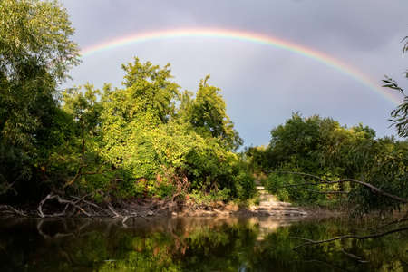 Rainbow over river in green forest. Idyllic landscape Фото со стока