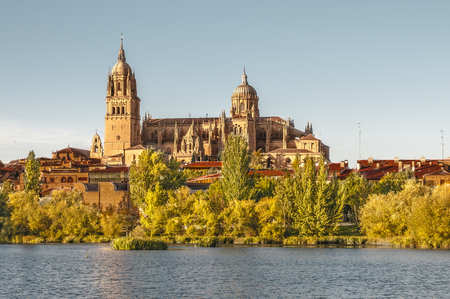 buttresses: cathedral, Salamanca
