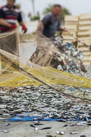 fishingnet: fisherman and fish in fishing net