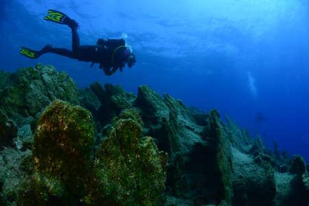 Underwater modeling. Reserve light, blue background.