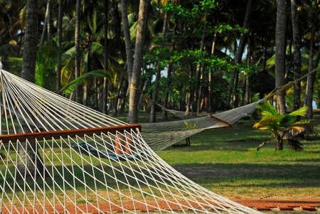 One of India finest beaches - Varkala beach, Kerala, India