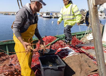 skipper: Fishermen in the harbor