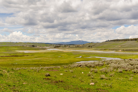 unites: Hayden Valley of Yellowstone National Park in summer. Unites States, Wyoming Stock Photo